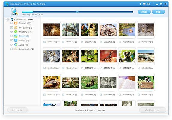 В ходе процесса можно просматривать найденные файлы.